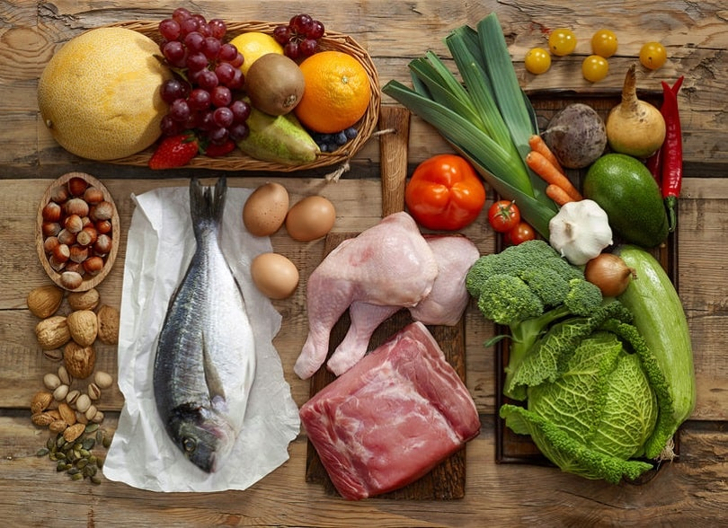 The nutrition - build muscle lose fat