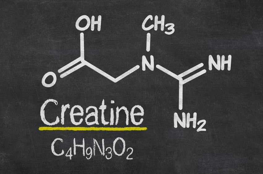 Best Creatine Supps