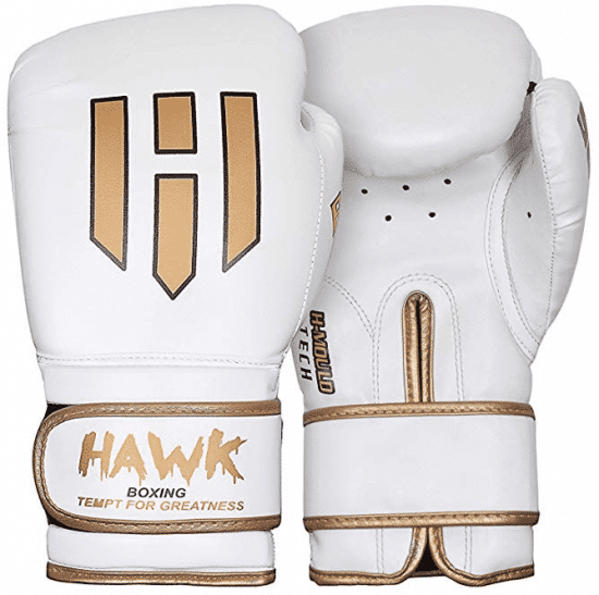 Hawk Boxing Gloves for Men & Women Training Pro Punching Heavy Bag Mitts