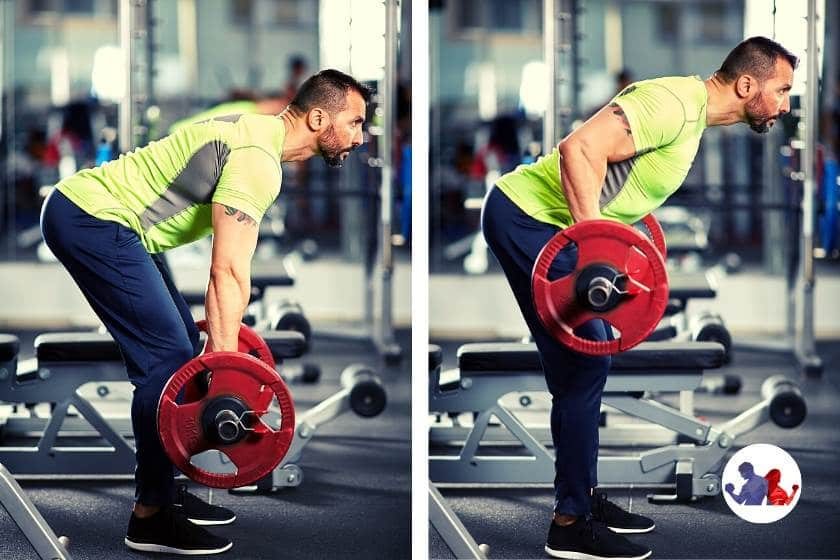 Compound Exercises - Barbell Rows