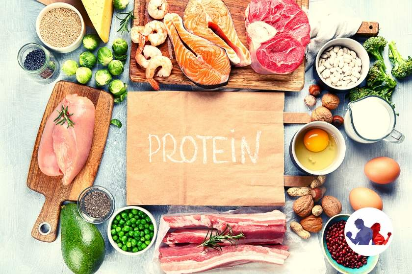 Protein-Rich Diet Plan